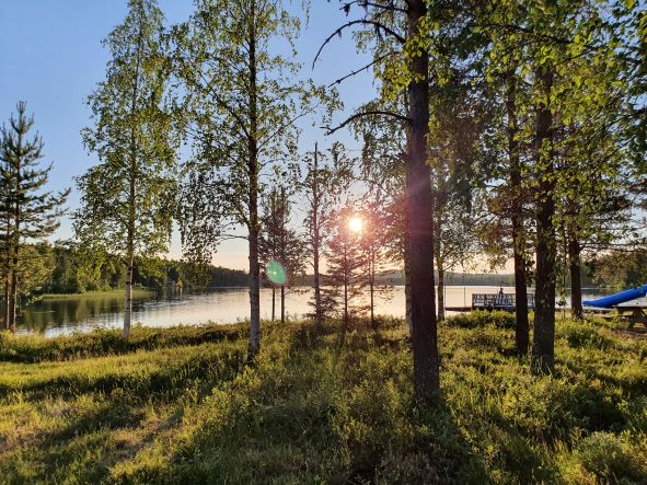 solnedgång, träd, sjö